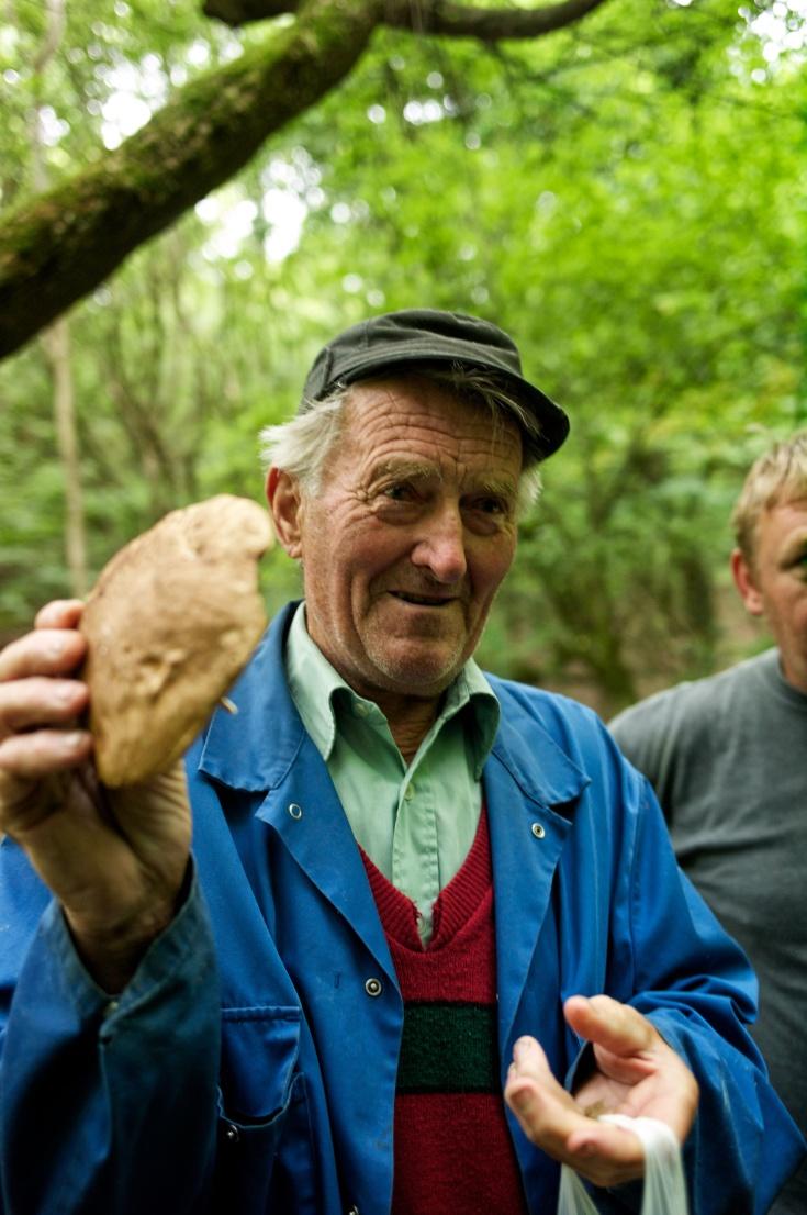 mushroom pickers 208