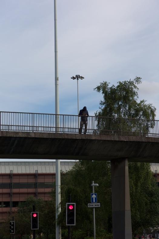 bridge 295