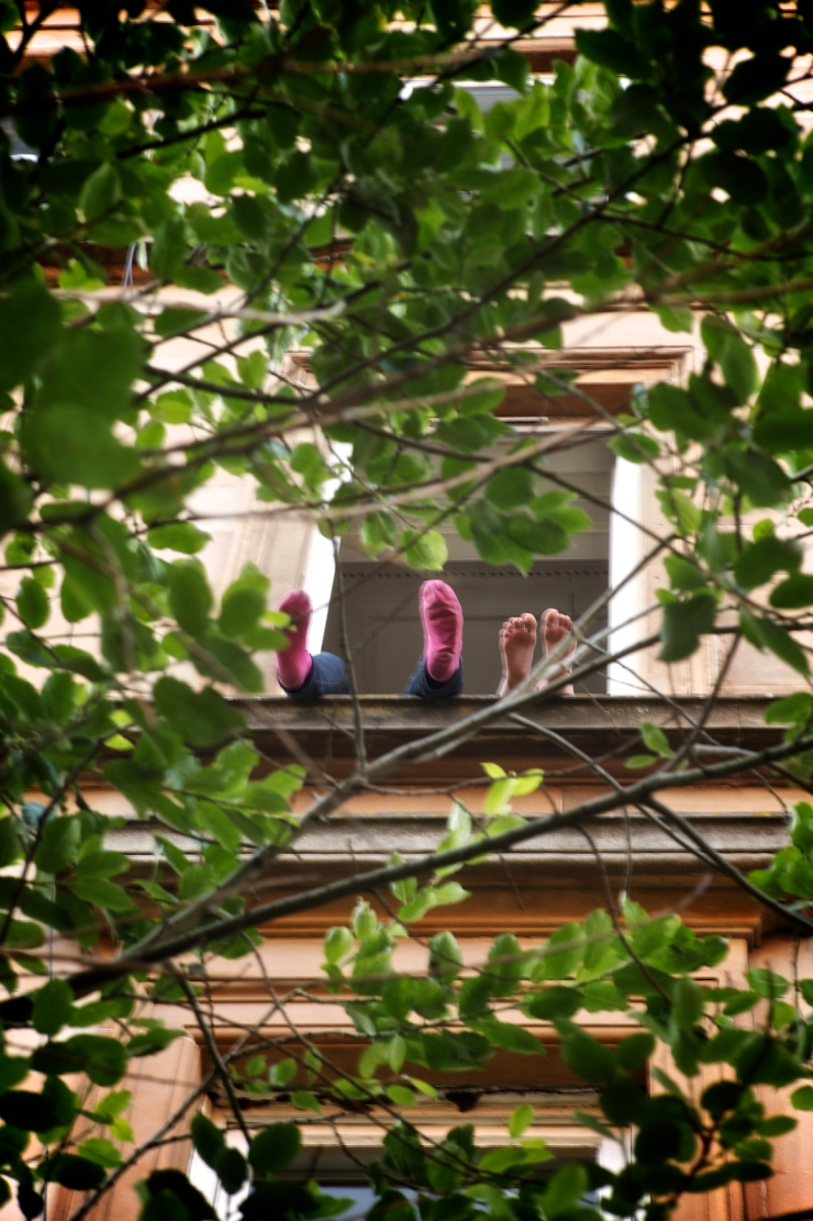 colour 306