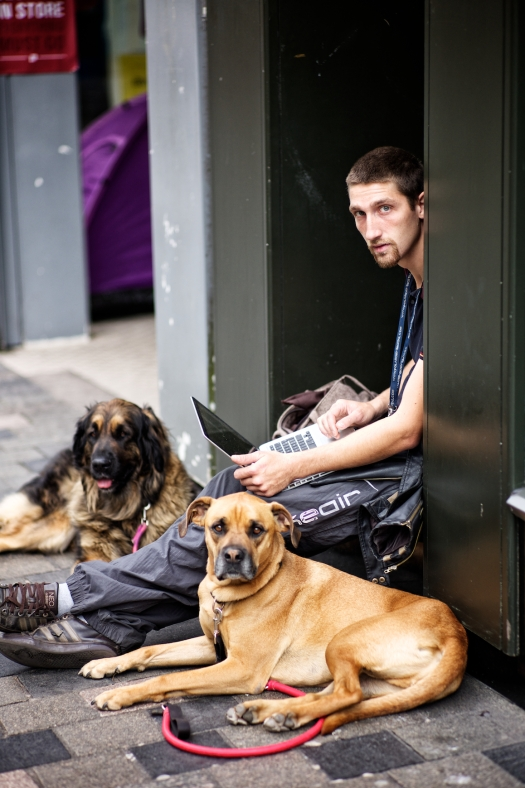 man with dogs 272