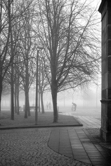 Glasgow Fog